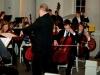 914-s-mit-cello-bass